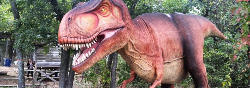 Heard_Natural_Science_Museum_Wildlife_Sanctuary2
